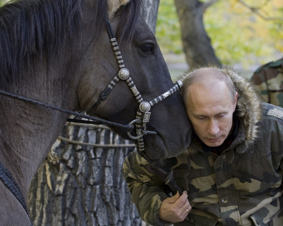 Vladimir Putin takes part in an expedition to Ubsunur Hollow Biosphere Preserve [Reuters]