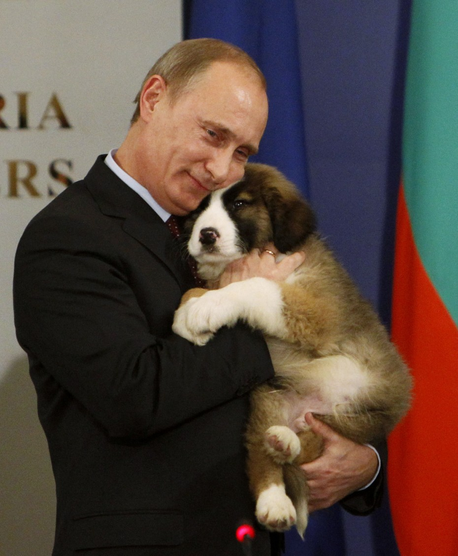 Putin hugs a Bulgarian shepherd dog, after receiving it as a present from Bulgaria's Prime Minister Boiko Borisov (not seen) in Sofia, November 13, 2010. [Reuters]
