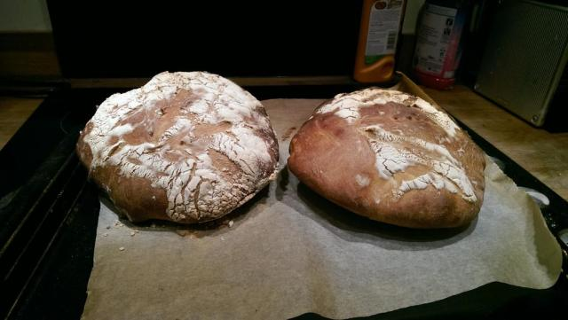 Woman adds vaginal yeast to sourdough starter, Internet flips out