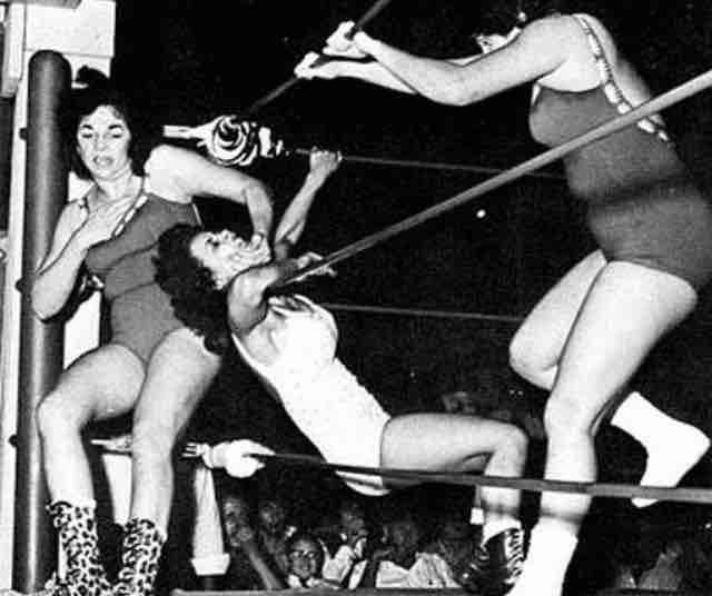 Erotic ladies of wrestling