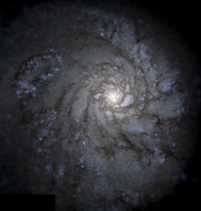 Simulated view of our Milky Way galaxy, seen from a nearly face-on angle. This image was created by simulating the formation of our galaxy using a supercomputer, which, in this case, consisted of 2,000 computers linked together.(Hopkins Research Group/Caltech)
