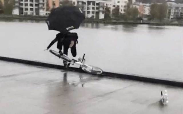 Guy saves skateboard from falling in water, ends up falling into it
