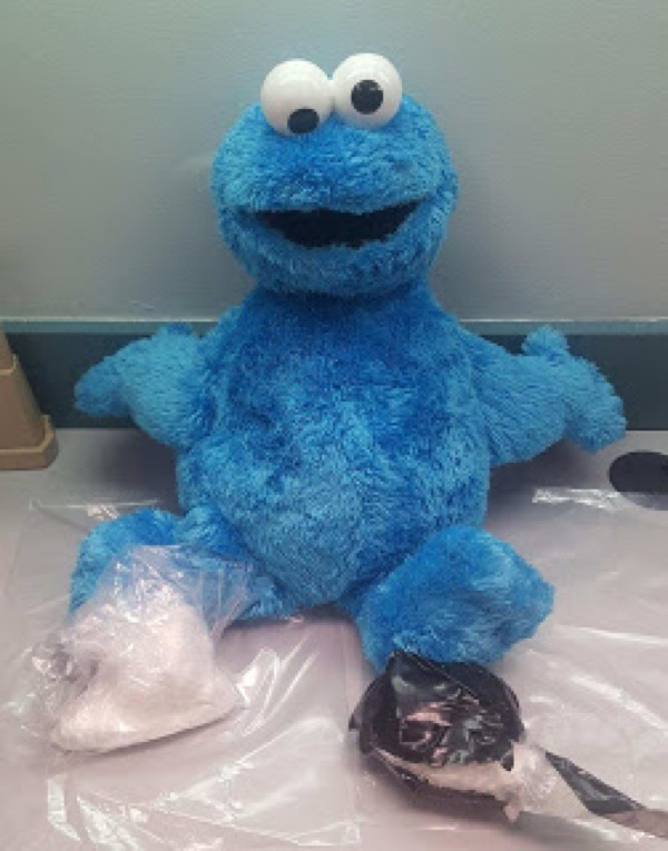 Man arrested for hiding cocaine in 'Cookie Monster' doll