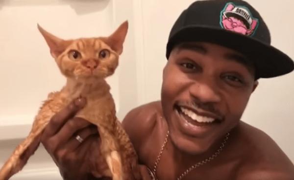 Cat bath rapper