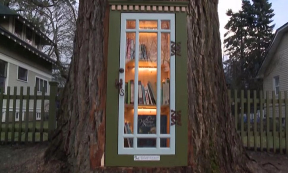 The most magical little free library is inside a hollowed-out tree stump