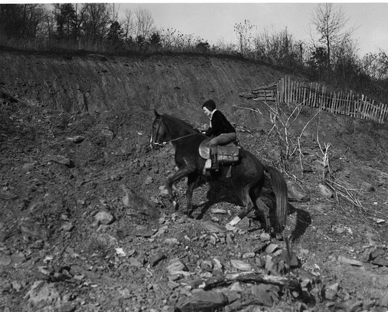 The WPA s horseback librarians