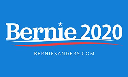A Sanders candidacy would make 2020 a referendum on the future, not a referendum on Trump