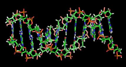 The DNA in his semen was completely replaced with another man's DNA