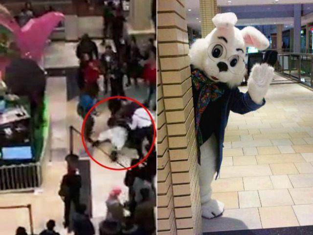 https://i1.wp.com/media.breitbart.com/media/2016/03/mall-Easter-bunny-brawl-facebook-640x480.jpg