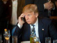 Trump on cellphone Matt Rourke:AP