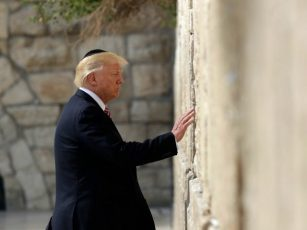 Image result for trump trip