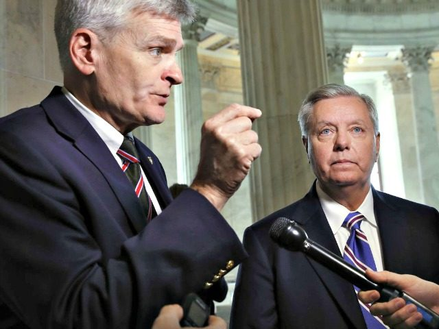 Image result for photos of sen lindsey graham and cassidy