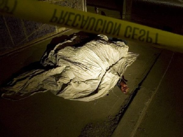 Image result for tijuana murder