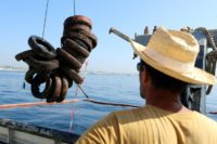 Ten thousand tyres are set to be lifted out of the sea by the divers and boat crew over the next few weeks, with the remaining 12,500 extracted in the second quarter of 2019