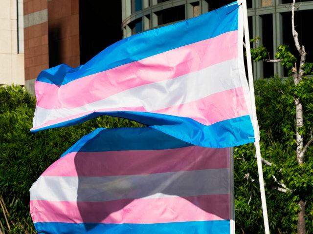 President Joe Biden will display transgender flags at the White House today to celebrate Transgender Day