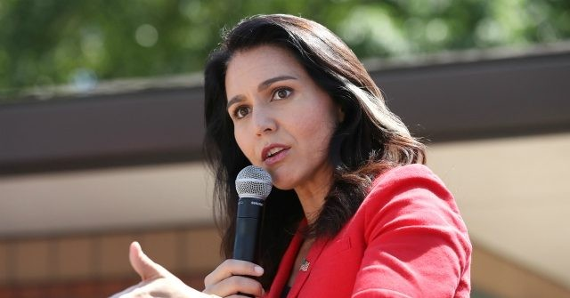 , Tulsi Gabbard Memorial Day Message: 'Let Us Reject the Self-Serving Warmongers & Media Propagandists', Nzuchi Times Breitbart