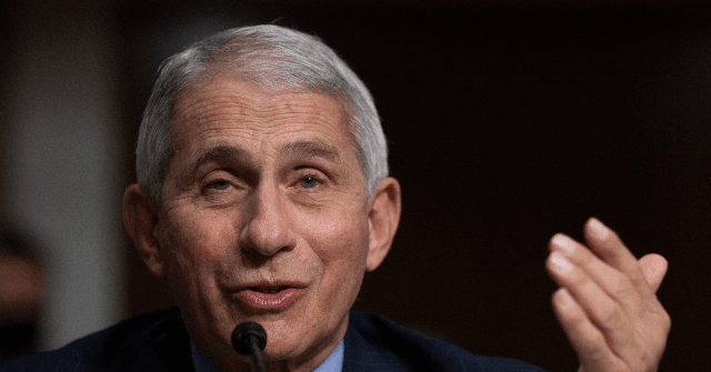 , Fauci: CDC Is 'Carefully Looking' at School Mask Guidance, Nzuchi Times Breitbart