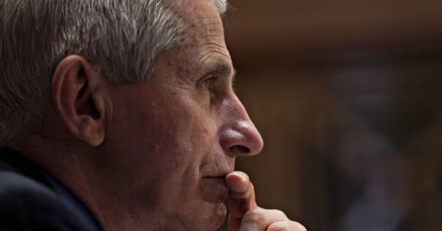 , Report: White House Actively Looking to Dump Anthony Fauci Amid Revealed Emails and Flip-Flopping, Nzuchi Times Breitbart