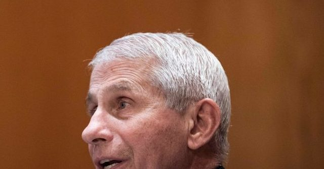 , Anthony Fauci Warns America to Not Accuse China for Global Pandemic amid 595,000 Deaths and $13 Trillion Cost, Nzuchi Times Breitbart