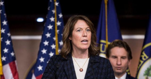 , Report: Democrat Cindy Axne Breaks 'Money Pledge,' Accepts PAC Money, Nzuchi Times Breitbart