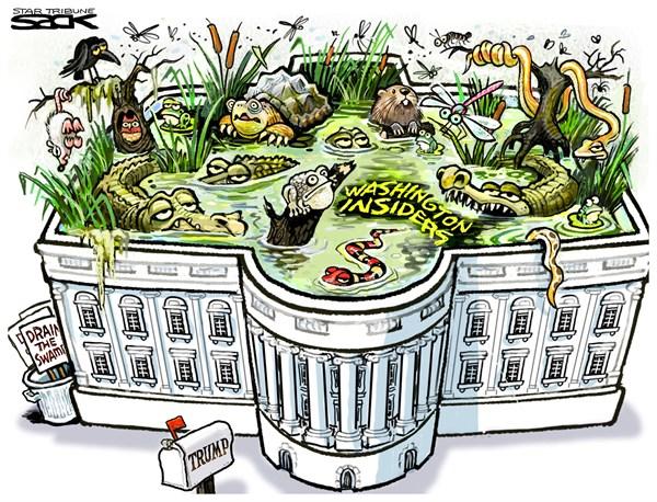 Steve Sack - The Minneapolis Star Tribune - Trump Swamp - English - transition,swamp,cabinet,administration,Washington,Trump