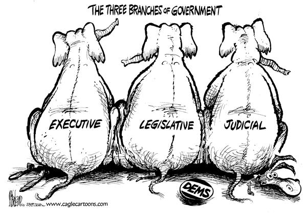Image result for executive presidency cartoons