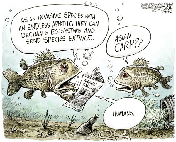 132539 600 Fresh Water Invasive Species cartoons