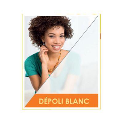 Film De Vitrage Depoli Blanc 250 X 90 Cm Castorama