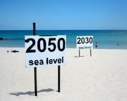 Cayman News Service, Rising seas, climate change