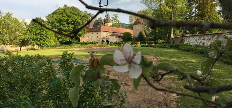 initiative en permaculture au château de Magny-en-Morvan depuis le parc