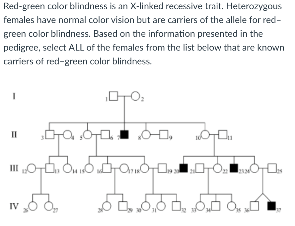 Solved Red Green Color Blindness Is An X Linked Recessive