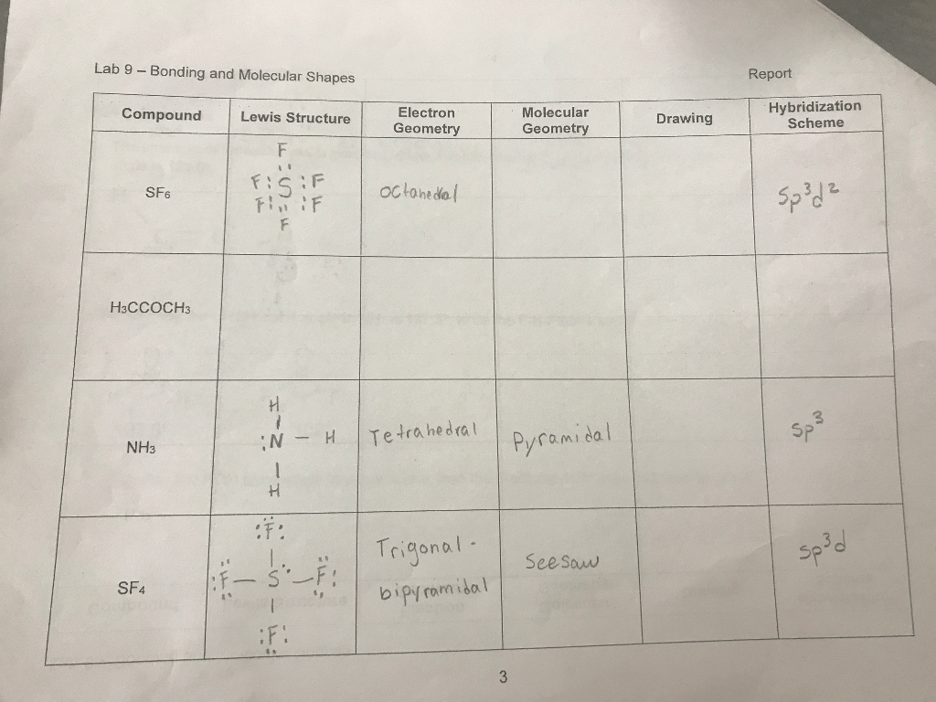 Solved Lab 9 Bonding And Molecular Shapes Report Molecul