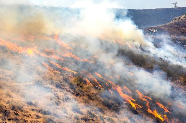 People stand behind the fire line as flames from the Steptoe Canyon Fire spread through dry grass in Colton, Washington, on July 22.