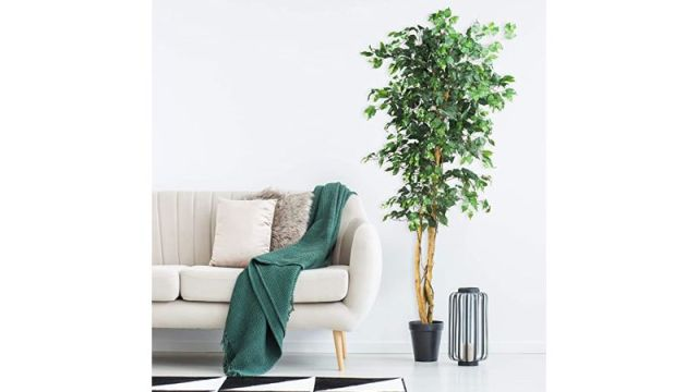 Nearly Natural Artificial Ficus Tree
