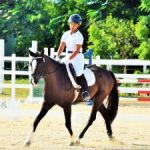 Equestrians ride into new dressage season