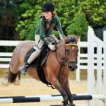 Equestrians jump through last show of season