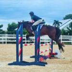 Equestrians jump back in the saddle