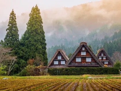 Image may contain: Housing, House, Building, Cottage, Nature, Outdoors, Tree, Plant, Fir, Abies, and Countryside