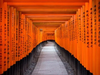 Image may contain: Building, Architecture, Temple, Worship, Shrine, Gate, and Torii