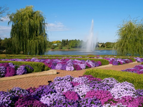 The Most Beautiful Botanical Gardens in the U.S.   Condé Nast Traveler