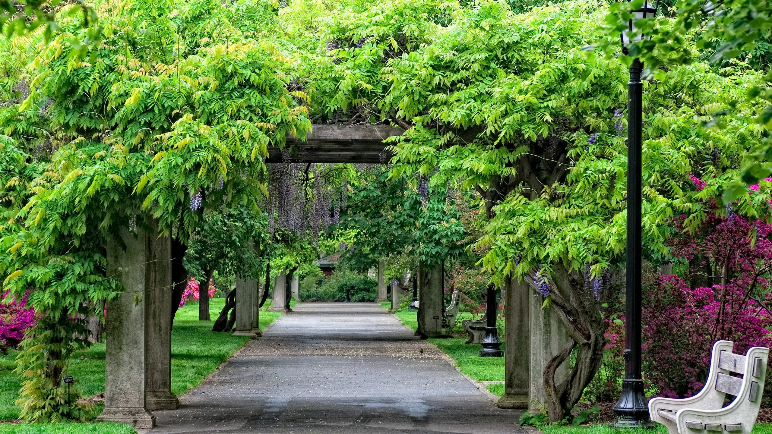 Bernstein the architects marion weiss and michael manfredi are well known at the brooklyn botanic garde. Brooklyn Botanic Garden Park Review Conde Nast Traveler