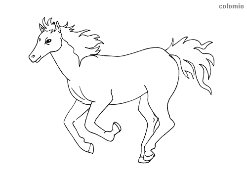 Horses Coloring Pages Free Printable Horse Coloring Sheets