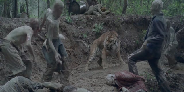 Image result for shiva walking dead