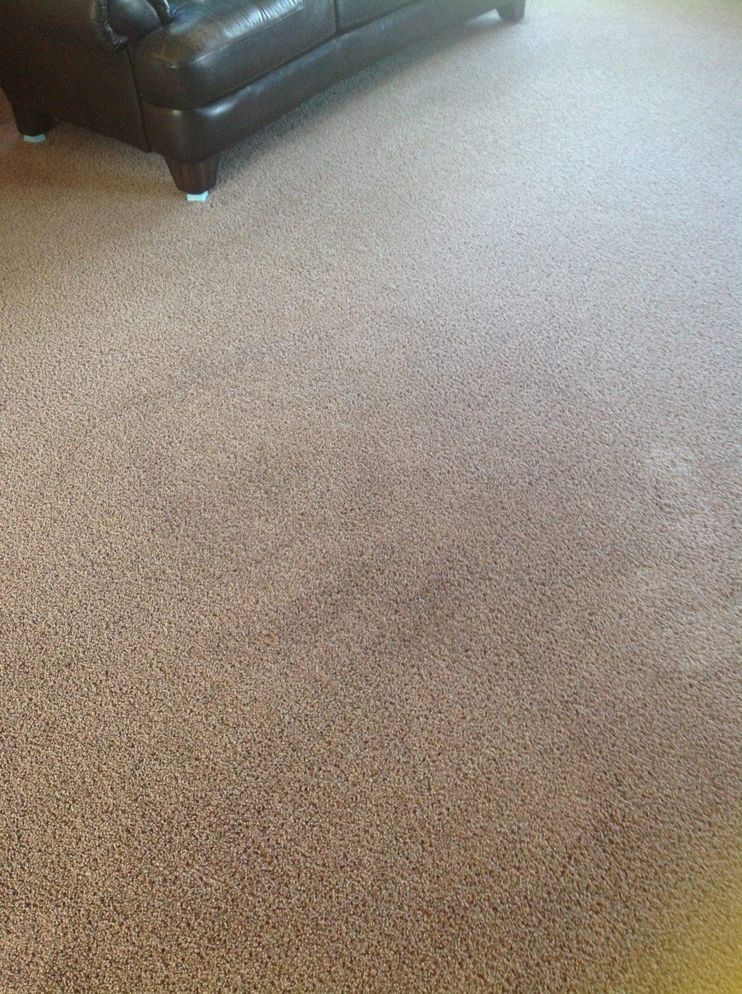 Mohawk Carpet Warranty Complaints Www Resnooze Com