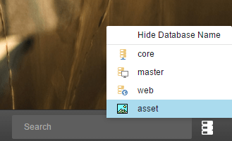 DatabaseSelector