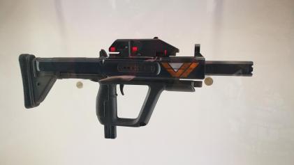 Destiny 2 guns (9)