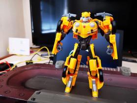 Bumblebee (7)