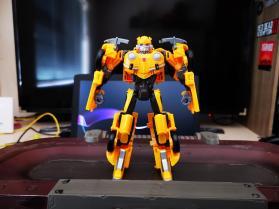 Bumblebee (8)