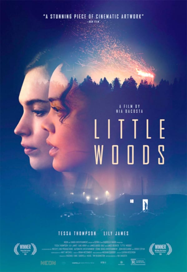 Good people do bad things for family in the crime drama Little Woods 4