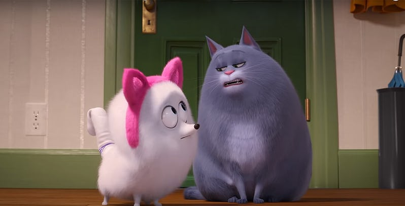 There are steps to becoming a cat in this new trailer for the Secret Life of Pets 2 2